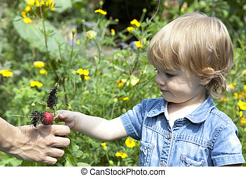 Baby giving mother radishes - Baby in flower filled garden...