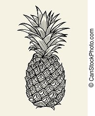 Pineapple vector Illustration - Pineapplefruit. Hand drawn...