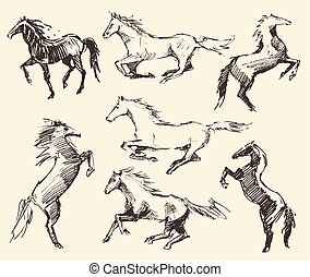 Set hand drawn horses vector illustration sketch - Set of...