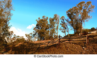 Rural rustic fence - Rural rustic fencing on hilly field...