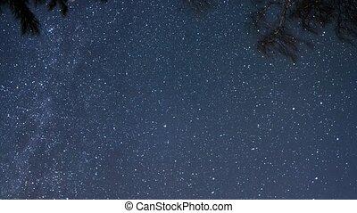 The stars revolve