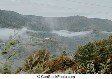 landscape of mountains with fog