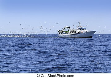 professional fisherboat many seagulls blue ocean