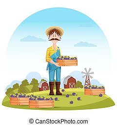 Agriculture man on field, farmer harvester. Worker or...