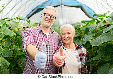 happy senior couple at farm showing thumbs up - farming,...