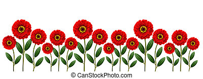 Red flowers line isolated on white