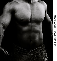 Artistic image of muscular male body in the dark