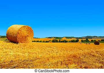 Hay Bales - Tuscany Landscape With Many Hay Bales In The...