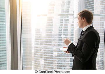Businessman at office - Successful businessman in classical...