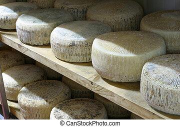 hard cheese - cheese during natural seasoning