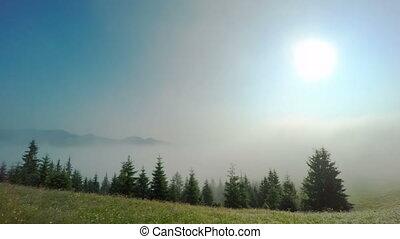 Morning Mist in Mountans.