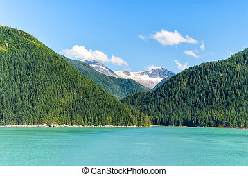 Alaska landscape with green forest, river moutains with the...