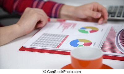 Woman Carries Out An Audit - Accountant Woman Carries Out An...