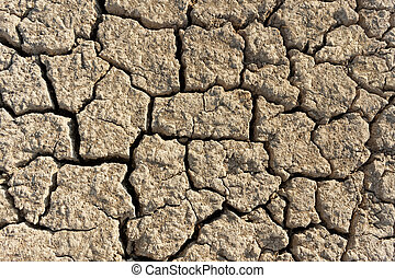 Dried soil background - Abstract background with arid and...