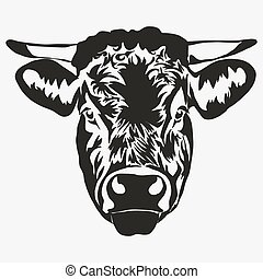 Bull head vector - Bull head on white background, butcher...