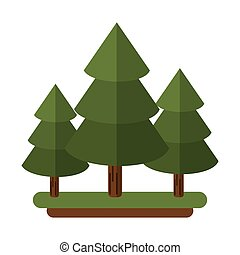canadian evergreen tree pine vector illustration eps 10