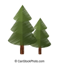 colored canadian evergreen tree pine vector illustration eps...