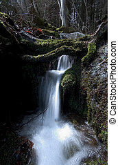 Small Waterfall - A Small Waterfall into the Woods in North...