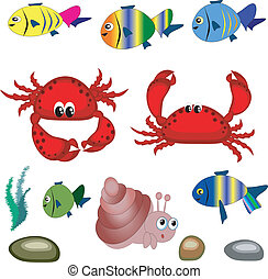 Sea animals. - Funny tropical marine animals at the white.