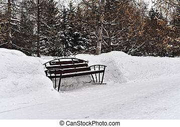 Lonely city park bench surrounded by snow