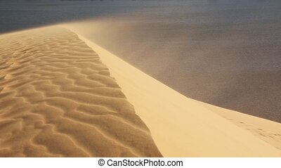 Sand blowing over the dunes - Stormy wind blowing sand over...