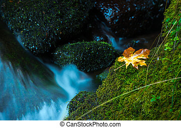 Watson Creek Oregon - Oregon Cascades Autumn
