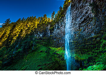 Watson Falls Clearwater River Douglas County Oregon