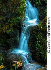Watson Creek Oregon Fall Colors - Oregon Cascades Fallen...