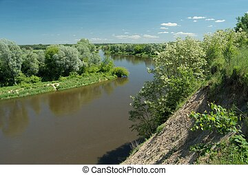 Bug River. Poland wschodnia.Dolina river with trees growing...
