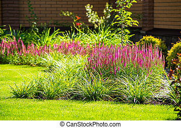 beautiful landscape design - beautiful landscaping with...