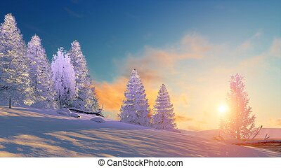 Winter landscape with snowy firs at sunset - Winter...