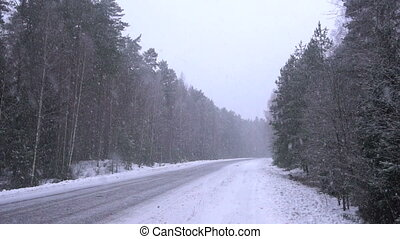 Snow coming down in the forest. - Snow coming down in the...