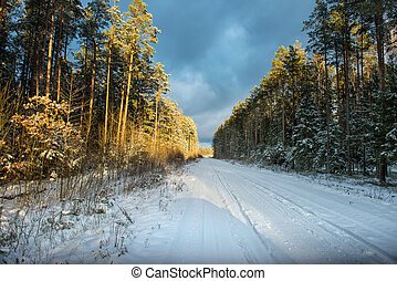 Empty snow covered road in winter landscape - Empty snow...