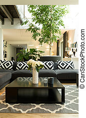 Room with sofa, plants and skylight - Large living room with...