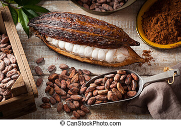Cocoa beans and pod