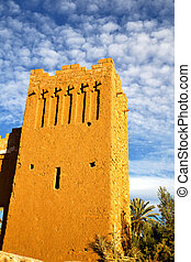 africa histoycal maroc old plant - africa in histoycal maroc...