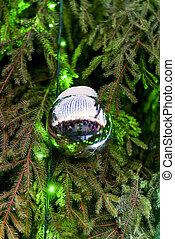 Shining Christmas ball hanging on green Christmas tree...
