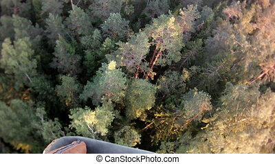 view from a balloon basket on forest