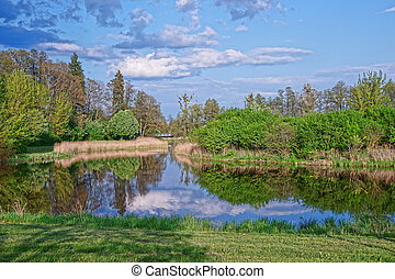 Trees and sky reflected in pond at Bialowieza National Park...