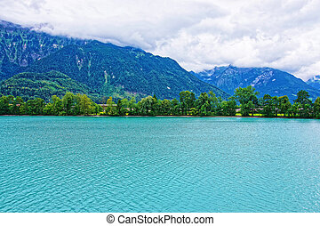 Nature in Lake Brienz and Brienzer Rothorn mountain Bern Switzerland