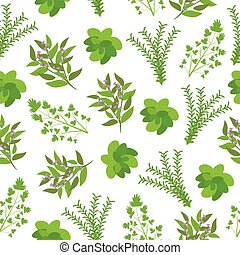 Seamless background of Herbs illustration with basil, sage, rosemary, and parsley on white background