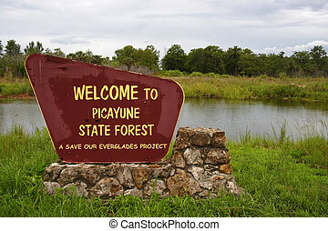 Picayune State Forest - Entrance to Picayune State Forest,...