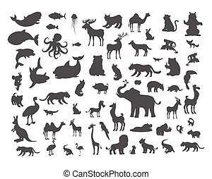 Mammals Birds Fish Reptiles Amphibias Bats Set. - Set of...
