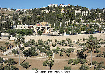 Kidron Valley and the Mount of Olives in Israel - The holy...