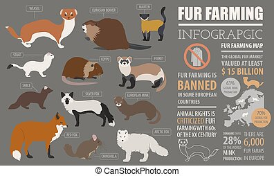 Fur farming infographic template. Flat design. Vector...