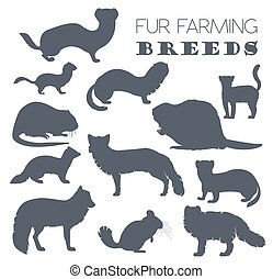 Fur farming. Flat design. Vector illustration