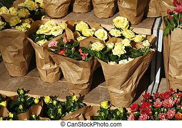 Gelbe Rosen in Papiertüten auf einem Blumenmarkt