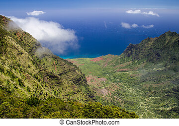 Kalalau Valley - View from the Kalalau Lookout in Kokee...