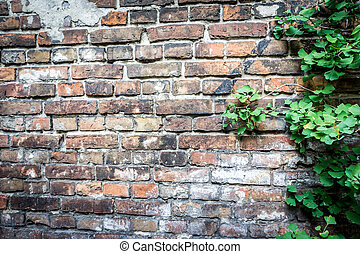 Wall of the Warsaw Ghetto, Poland
