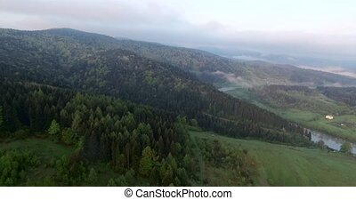 The picturesque landscape of the forest on the mountain -...